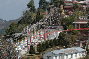 Nepal Flags Poon Hill trek Nepal