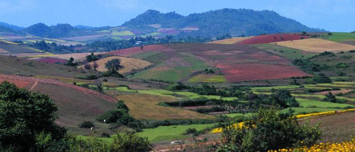 Shan country side Burma