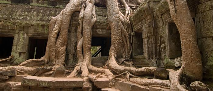 Ta Prhom Cambodia