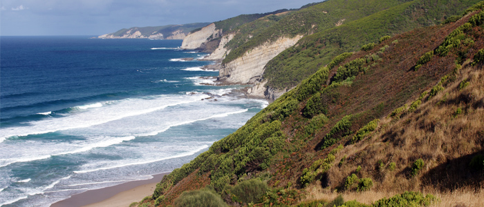 great ocean walk blog Looking down the coast