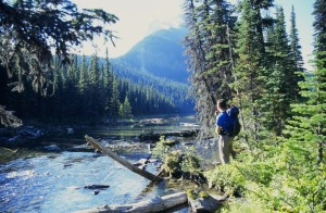 Canada Lakes Lodges Self Drive jasper
