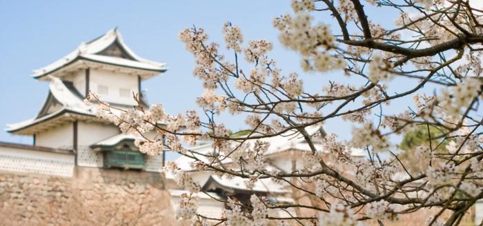 Japanese_old_castle_ruin_Kanazawa-joh_with_cherry-960