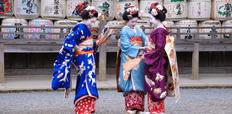 Maiko_in_Matsuo_Taisha_Shrine
