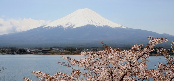 Mt.Fuji_and_Cherry_blossom.jpg960