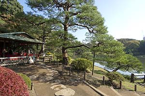 Kanazawa Explored Japanese garden