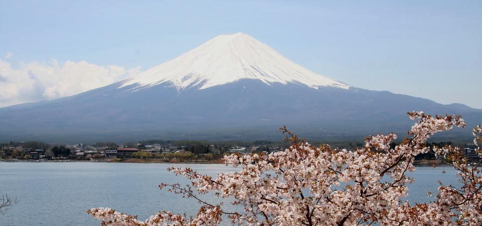 Mt.Fuji_and_Cherry_blossom.jpg960