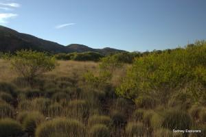 Scenery of the Larapinta Trail